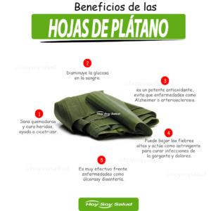 Beneficios de las hojas de plátano