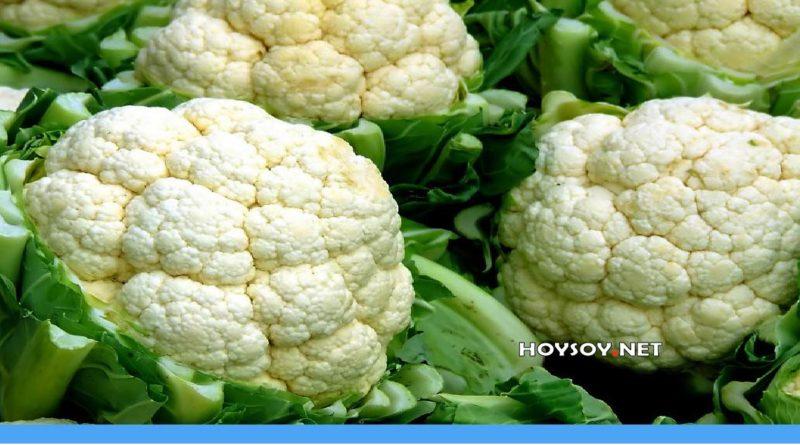 beneficios de el coliflor