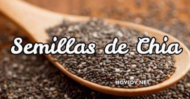 5 formas de consumir semillas de chia
