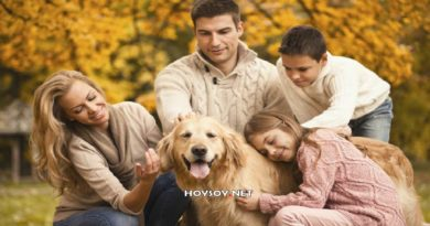 Beneficios de las mascotas para la familia