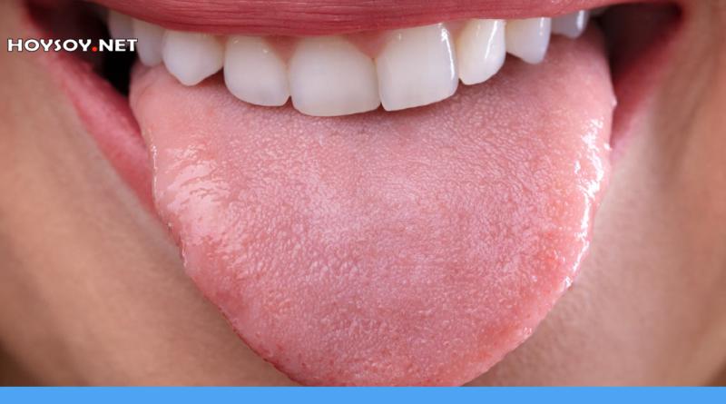 cosas que no sabias sobre la lengua