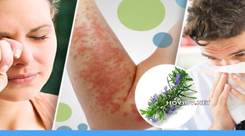 remedios herbales para calmar las alergias de la piel