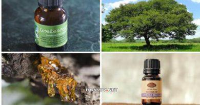 Beneficios del aceite de copaiba