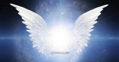 Descubre cuál es tu Ángel guardián físico